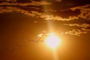 Primele imagini 3D cu Soarele