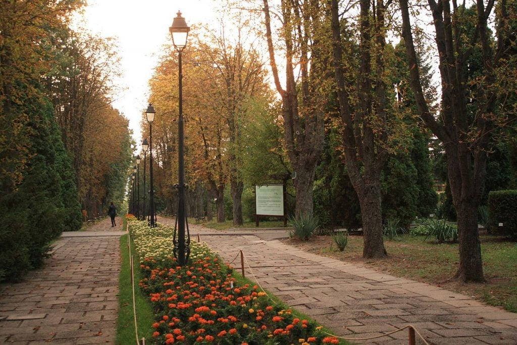Grădinile Botanice din Iași